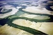 Alluvial Plain