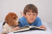 Reading to your favorite pet!