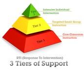 RTI / RAP / MAP / WIN / School-wide Intervention