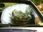 כשלא חוגרים חגורת בטיחות
