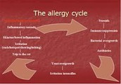 Can allergies be cured?