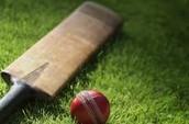 Cricket,Comment jouer
