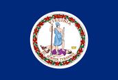 COLONY FLAG