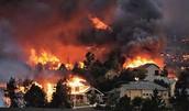 Homes Destroyed