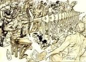 Odysseus's 12 man