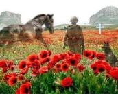 Lest we forget the soldiers who faught for us