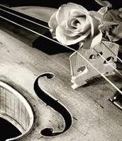 A mi me gusta tocar el violín!