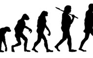 Evolution of man.  Made by Zach