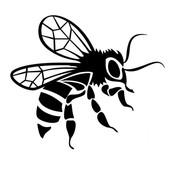 Servicios apicolas