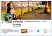 Grupo Voluntario Ayuda Animal Nva. Imperial