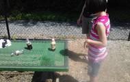 We made geysers!