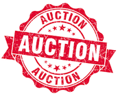 DISTRICT AUCTION!  Check it out!