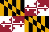 Maryland flag.