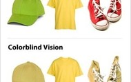 Comparing normal vision to color blind