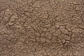 Dirt Texture