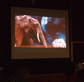 we finished the unit with a film festival