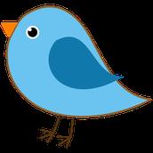 Kindergarten 1 Blue Birds