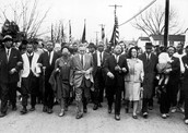 Selma to Montgomery March