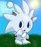 the sliver chao