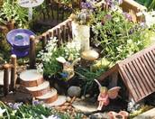 Container Garden Contest!