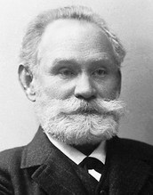 Russische wetenschapper Pavlov