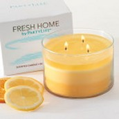 Fresh Home - Citrus Nectar