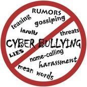 Rule #5 Cyberbullying