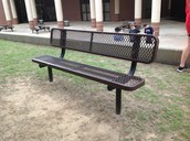 Abiotic Factor: Bench