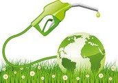 Positive Effects of Bio-Fuel
