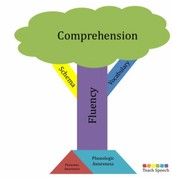 The Relationship between Fluency and Comprehension