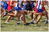 Sign ups for AHS/AMS Fall 2016 Cross Country Track Going on NOW