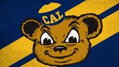 #3 University of California - Berkeley