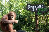 Zoo Trip 25th-26th August 2016