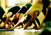 Beginner 101: An Intro to Yoga
