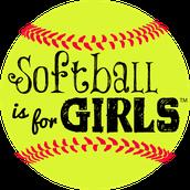 Softball/baseball