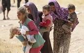 Yazidi Persecution in Iraq