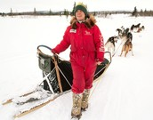 Who are the Iditarod mushers?