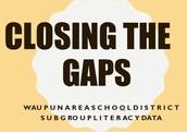 WASD Sub-group Literacy Data