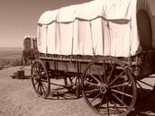 wagon on trail