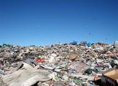 Canadian Landfill