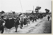 Bataan Death March-