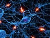 AGENTES NEUROLÓGICOS