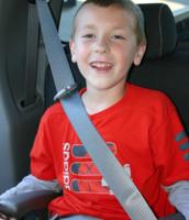 Seat Belt Area