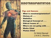What is Xenotransplantation ?