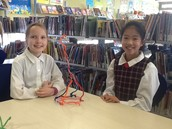Pipe cleaner challenge