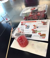 Day 2 - Strawberry DNA extraction!  The perfect summer STEM activity.