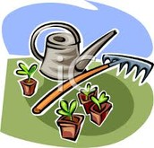 Tohickon Wellness and Garden Update