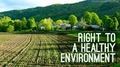 Right to a Healthy Environment