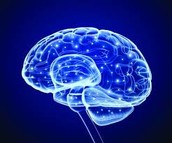 What causes memory loss