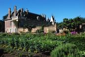 Normandie: Potager, dekorativa köksträdgårdar
